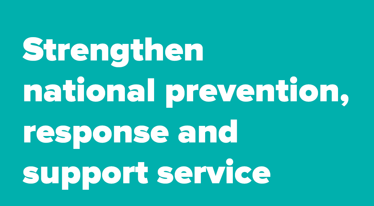Strengthen national prevention, response and support